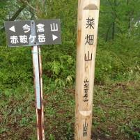 山梨百名山:菜畑山